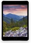 apple ipad mini 3 wi-fi 4g 128gb gris espacial